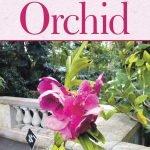 Robert's Orchid